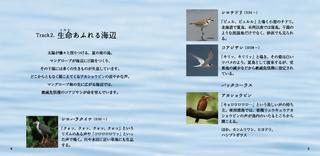 2019_BirdSongs_Book_04-05.jpg