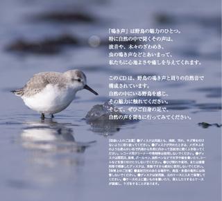 2019_BirdSongs_J_2.jpg