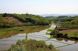 市貝町北部風景:谷津田 (2).jpg