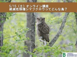 広報用画像.jpg