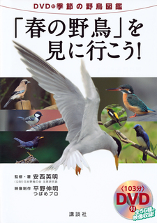p3書籍画像.jpg